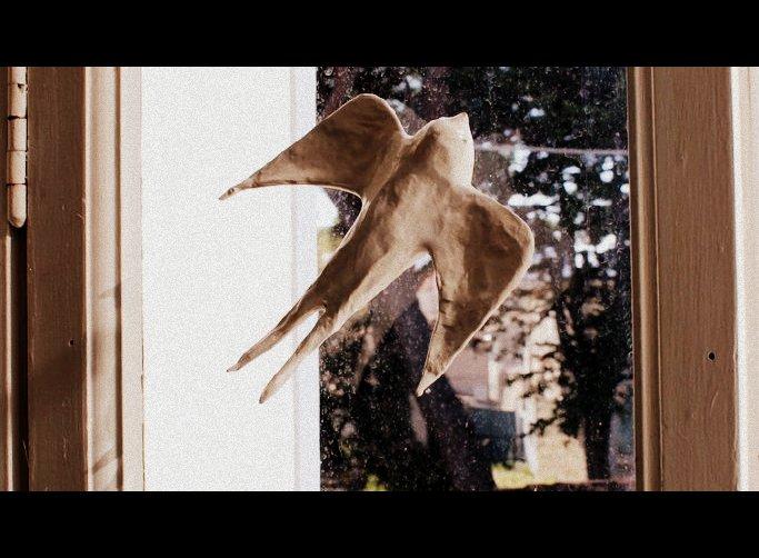 pappenstiel-oiseau-papier mâché 7