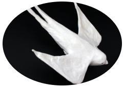 Petit oiseau / Tutoriel superposition